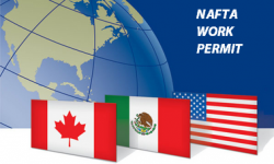 How to Apply for NAFTA Work Permit