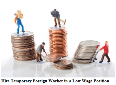 how to hire a temporary foreign worker