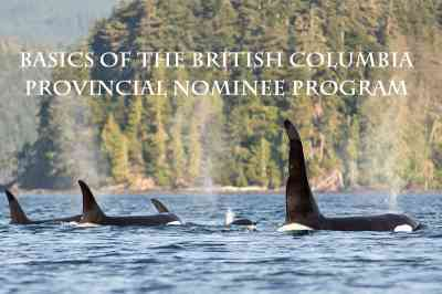 Basics of the British Columbia Provincial Nominee Program
