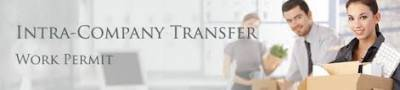 Intra Company Transfer Executives